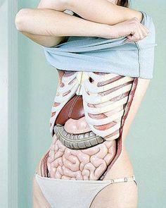 ladiesgym jelita a zdrowie